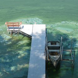 Iowa Sets New State Record for Blue-Green Algae Advisories