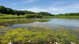 DNR and EPA Revising Implementation of Clean Water Act Section 401